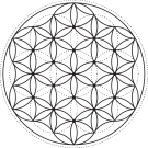 flower of life for crystal grid